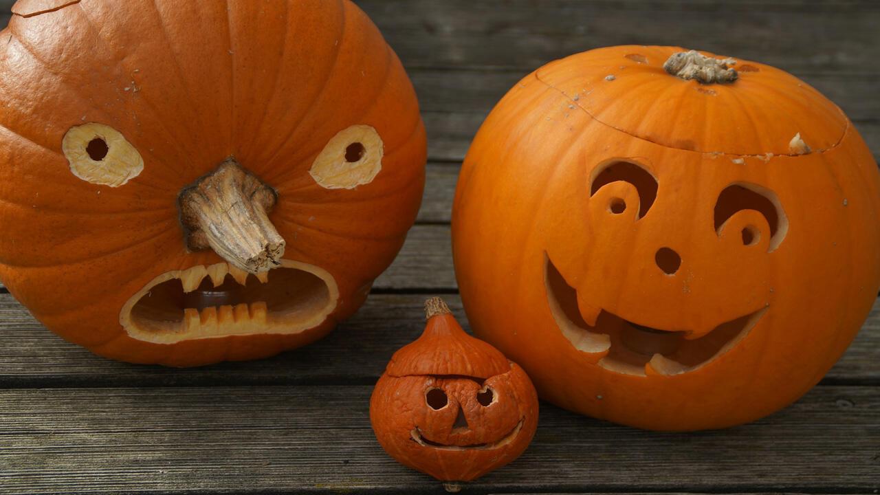 Kuerbis Schnitzen Fuer Anfaenger.Kurbis Schnitzen Eine Kinderleichte Anleitung Fur Den Halloween Kurbis Oko Test