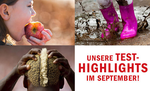 Unsere Test-Highlights im September