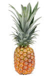 Dole Tropical Gold Super Sweet, Ananas