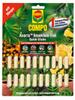 Compo Axoris Insekten-frei Quick-Sticks